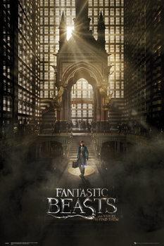 Les Animaux fantastiques - One Sheet 1 Affiche