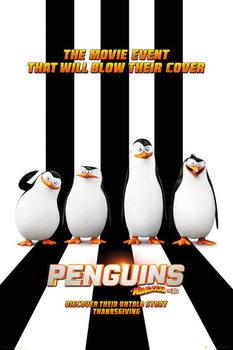 Les Pingouins de Madagascar - One Sheet Affiche