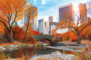 New York - Central Park Autumn Affiche