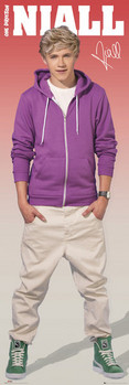 One Direction - niall Poster
