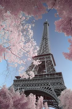 Paris - Eiffel Tower, David Clapp Affiche