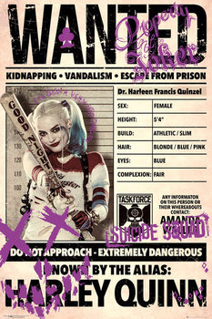 Suicide Squad - Harley Wanted Affiche