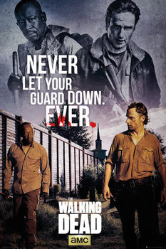 The Walking Dead - Rick and Morgan Affiche
