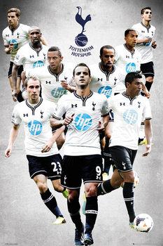 Tottenham Hotspur FC - Players 13/14 Affiche