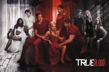 TRUE BLOOD - show your true co Affiche