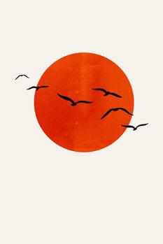 Kuva A Sunny Day