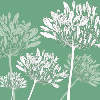 Fine Art Print Agapanthus breeze, 2005