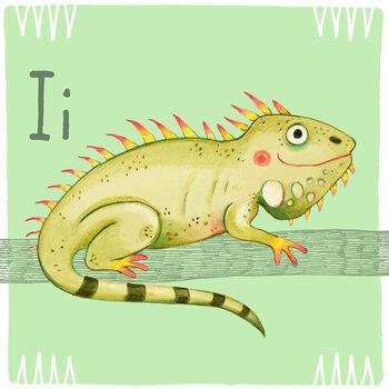 Kuva Alphabet - Iguana