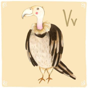 Kuva Alphabet - Vulture