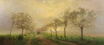 Fine Art Print Apple Trees and Broom in Flower