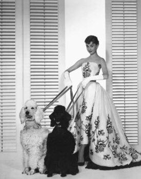 Fine Art Print Audrey Hepburn