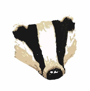 Fine Art Print Badger