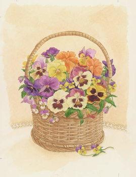 Fine Art Print Basket of Pansies, 1998