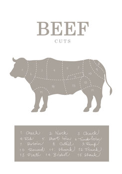 Illustration Beef Cuts