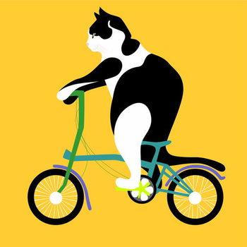 Reprodução do quadro Cat on a Brompton Bike