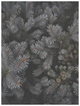 Illustration christmas tree foilage