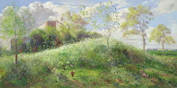Fine Art Print Cow Parsley Hill, 1991
