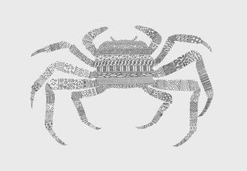 Fine Art Print Crab