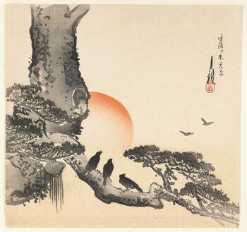 Fine Art Print Crows on a Tree Trunk