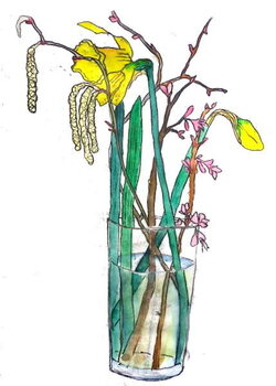 Fine Art Print Daffodils