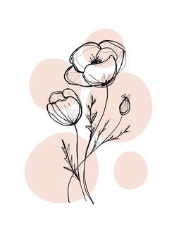 Illustration Delicate Botanicals - Poppy
