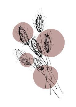 Kuva Delicate Botanicals - Wheat