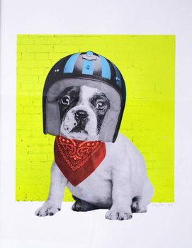 Fine Art Print Easy Rider, 2016,