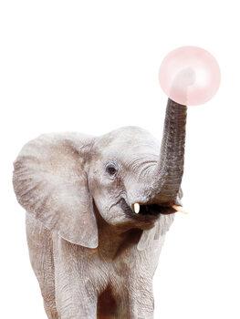 Arte Fotográfica Elephant with bubble gum