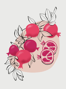 Illustration Fathia pomegranates
