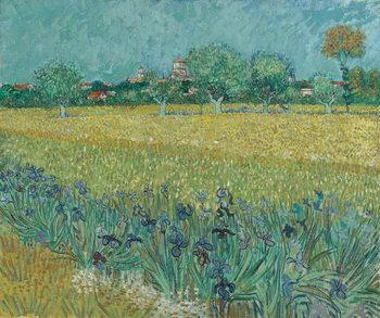 Reprodução do quadro Field with Flowers near Arles, 1888