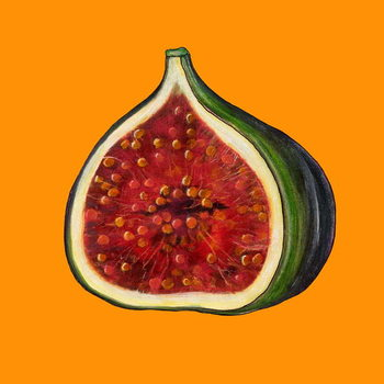 Fine Art Print Fig on orange
