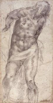 Fine Art Print Figure Study