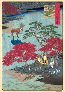 Illustration FLOATING KODAMAS