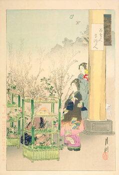 Fine Art Print Flower Seller