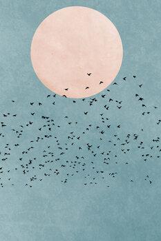 Illustration Fly Away