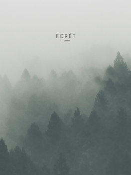 Illustration foret2