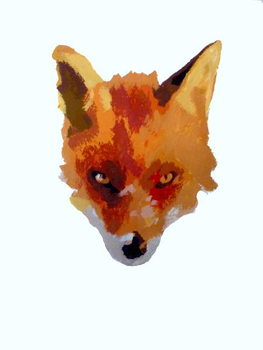 Fine Art Print Fox face, 2013