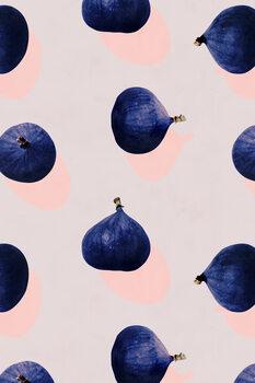 Ilustração Fruit 16