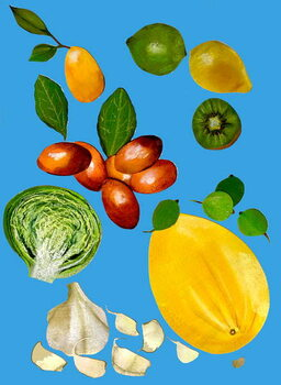Fine Art Print Fruit & veggies 2020