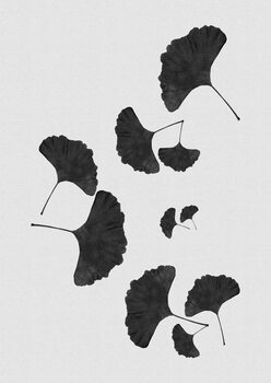Illustration Ginkgo Leaf Black & White I