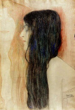 Taidejuliste Girl with Long Hair