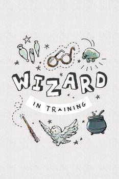 Impressão de arte Harry Potter - Mago em treinamento