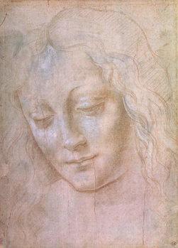 Fine Art Print Head of a woman