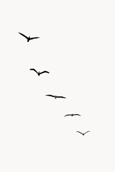 Illustration Heavenly Creatures