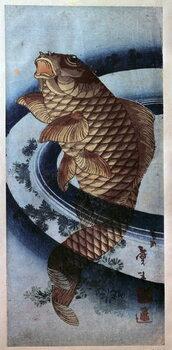 Fine Art Print Japanese art, carp