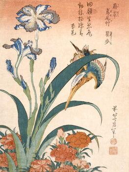 Fine Art Print Kingfisher