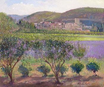 Reprodução do quadro Lavender Seen Through Quince Trees, Monclus