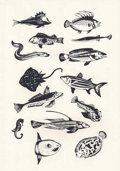 Fine Art Print Monotone Plain Fish, 2015