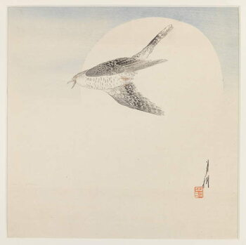 Fine Art Print Nightingale Flying by Moon