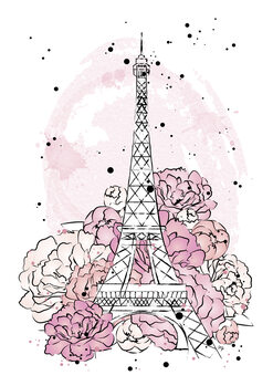 Illustration Peony paris